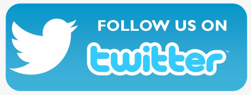 Twitter_follow_button_in_WordPress